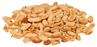 peanut transparent nut