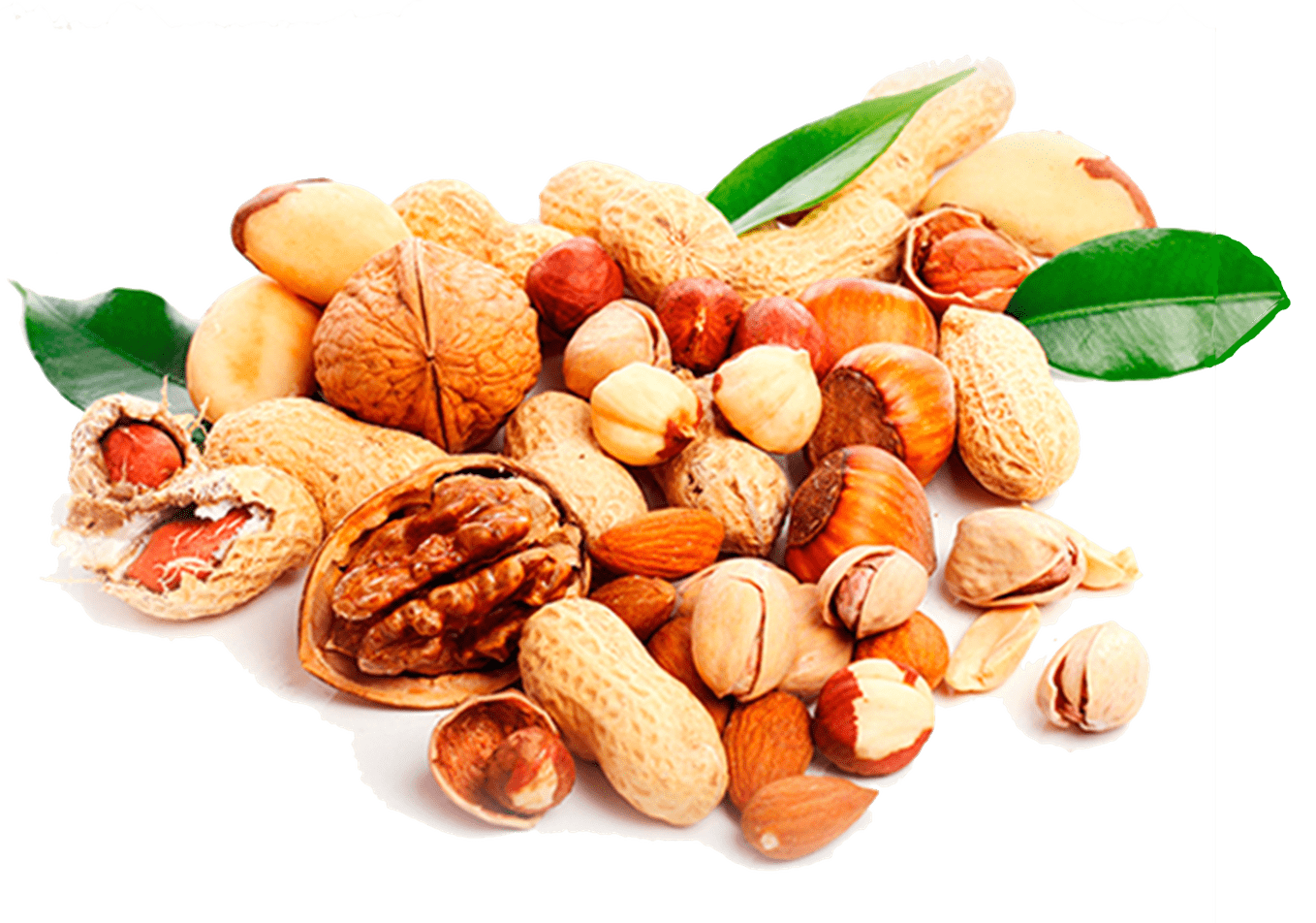 nuts transparent diet