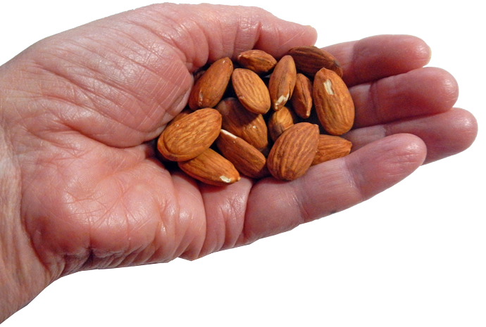 Nuts transparent healthy. And your health unl