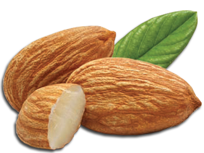 nuts transparent fresh