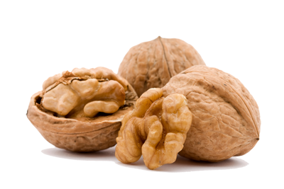 Nuts transparent walnut. Png image with background
