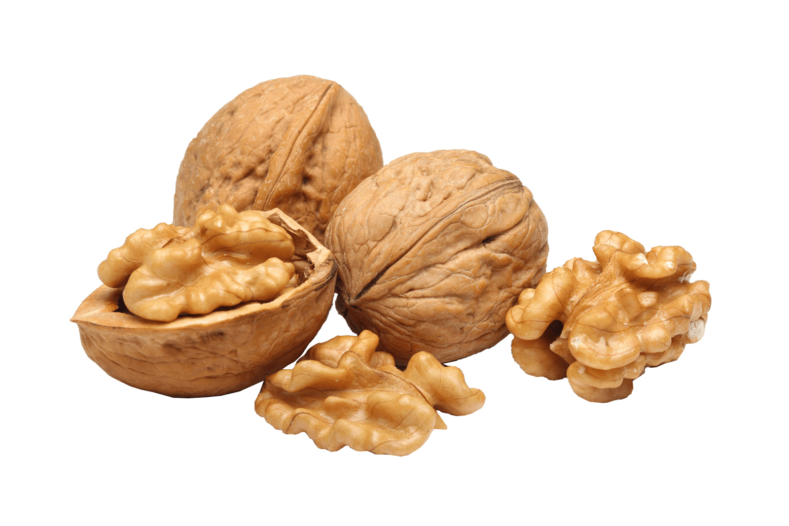 Nuts transparent walnut. Group png stickpng download