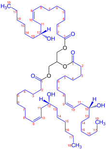 Nuts vector castor plant. Oil wikipedia structure of