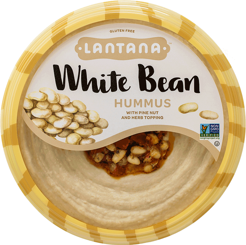 Nuts vector pine nut. White bean lantana foods