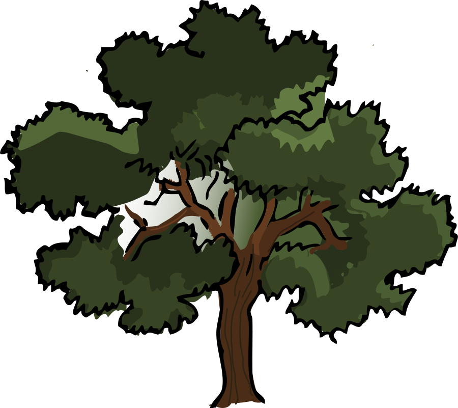 oak clipart tree animation