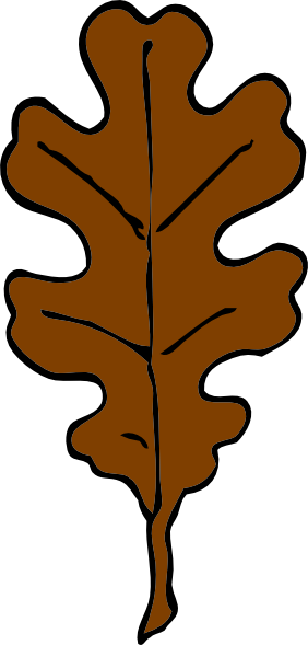 Clip art oak . Brown clipart graphic library library