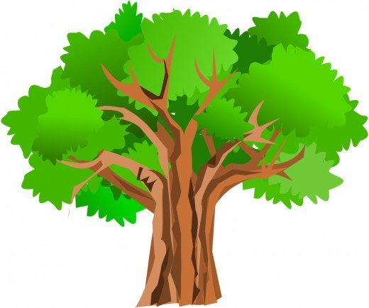 Oak clipart detailed tree. Silhouette clip art at