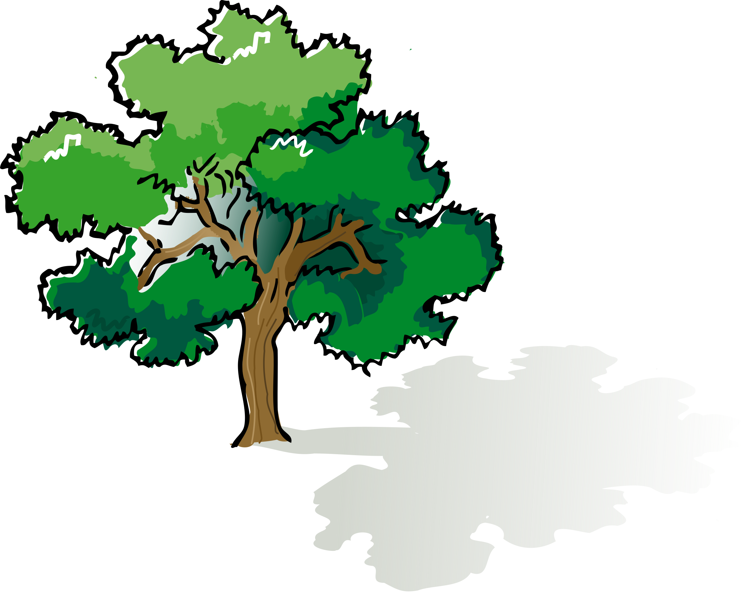 Oak clipart tree animation. Colored big image png
