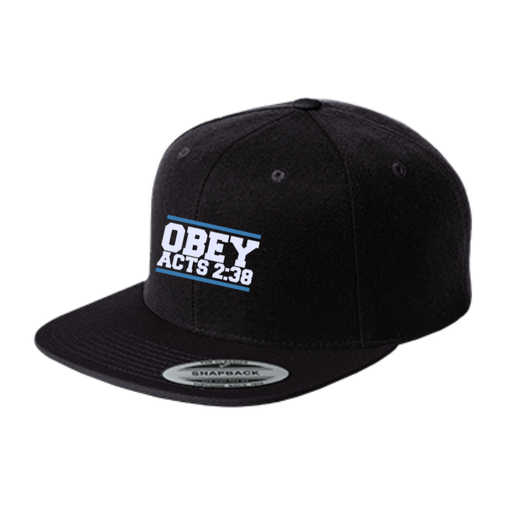 Transparent snapback obey. Acts flat bill high