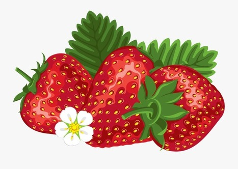 Oblong strawberry. Cartoon red apple clip