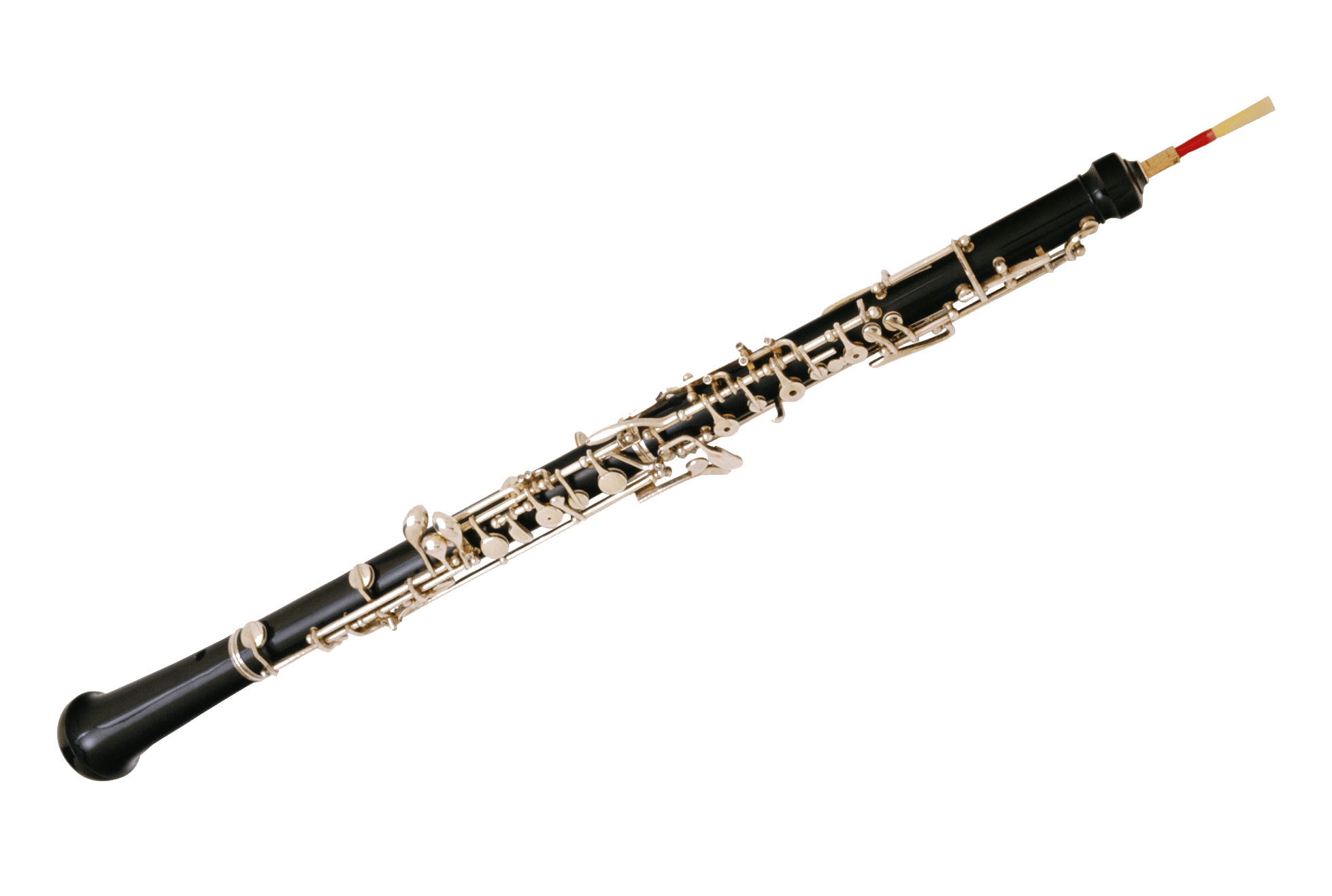 Oboe drawing. What playing the is