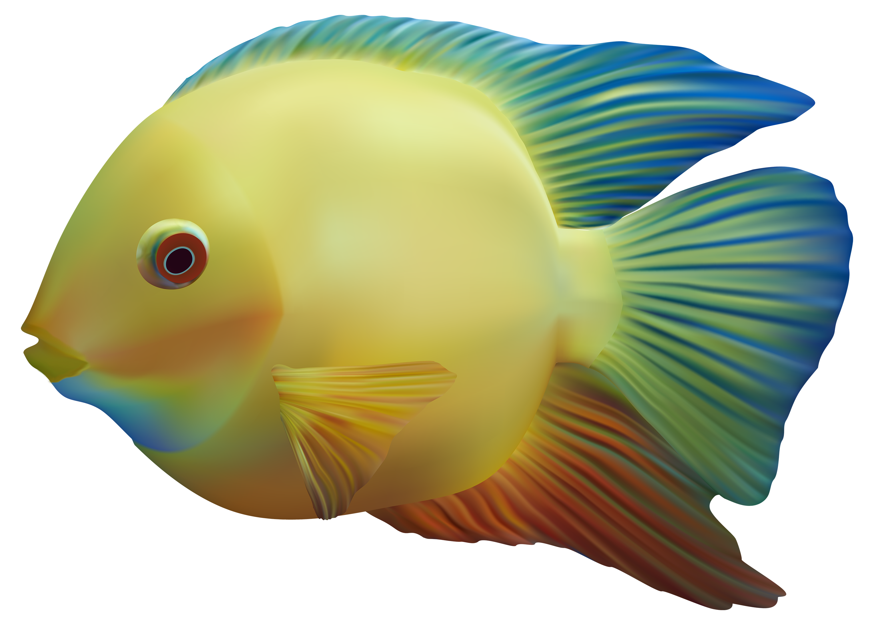Ocean animals png. Fish image free download