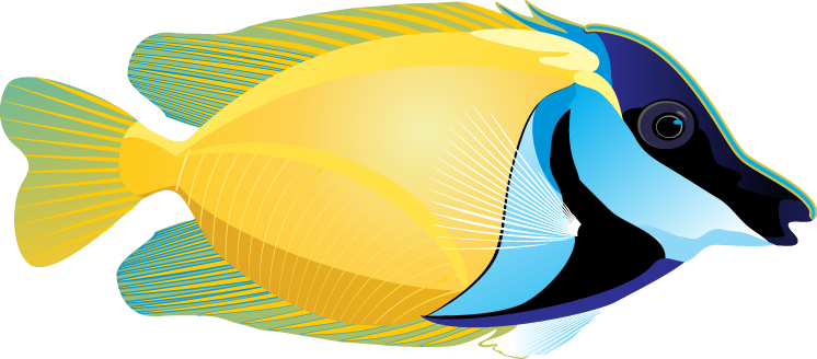 Ocean clipart fish. For kids at getdrawings