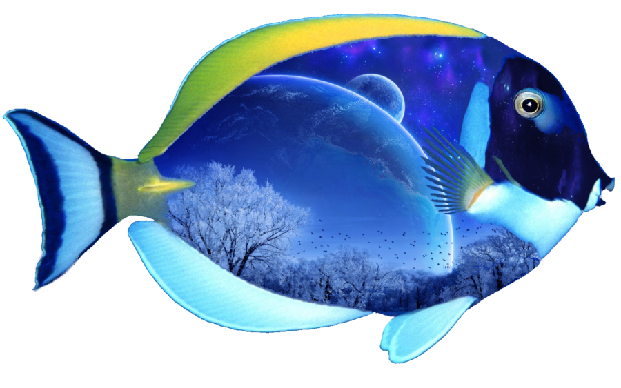 Ocean fish png. Fantasy by mysticmorning on