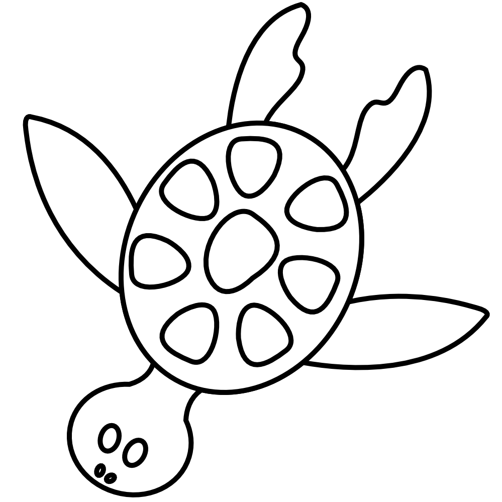tortoise vector turtle outline
