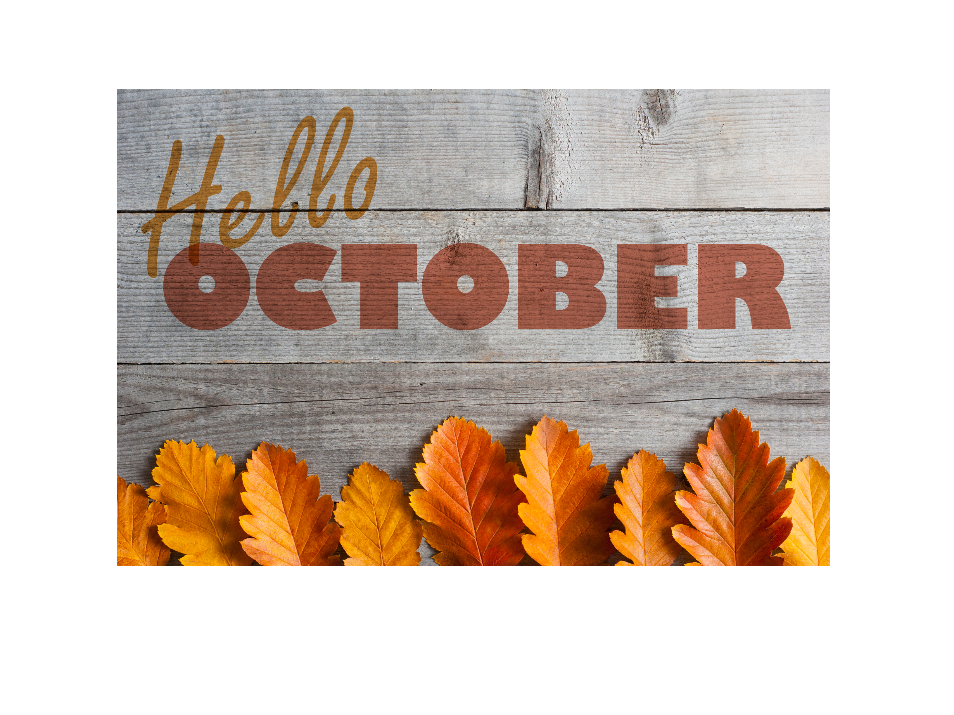 October png hello. Lakehouse recovery center lakehouserecoverycentercom