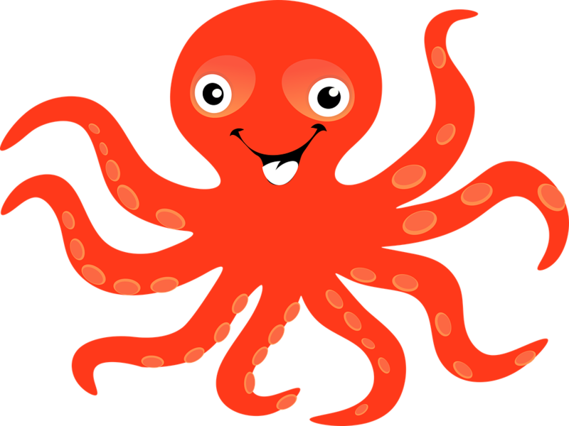 Octopus png. Download free image with