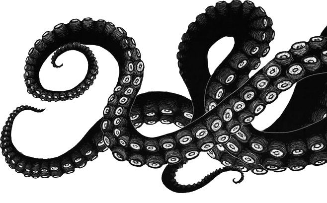Octopus tentacle png. Collection of tentacles