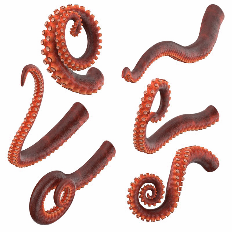 Tentacle transparent png. Download free octopus tentacles