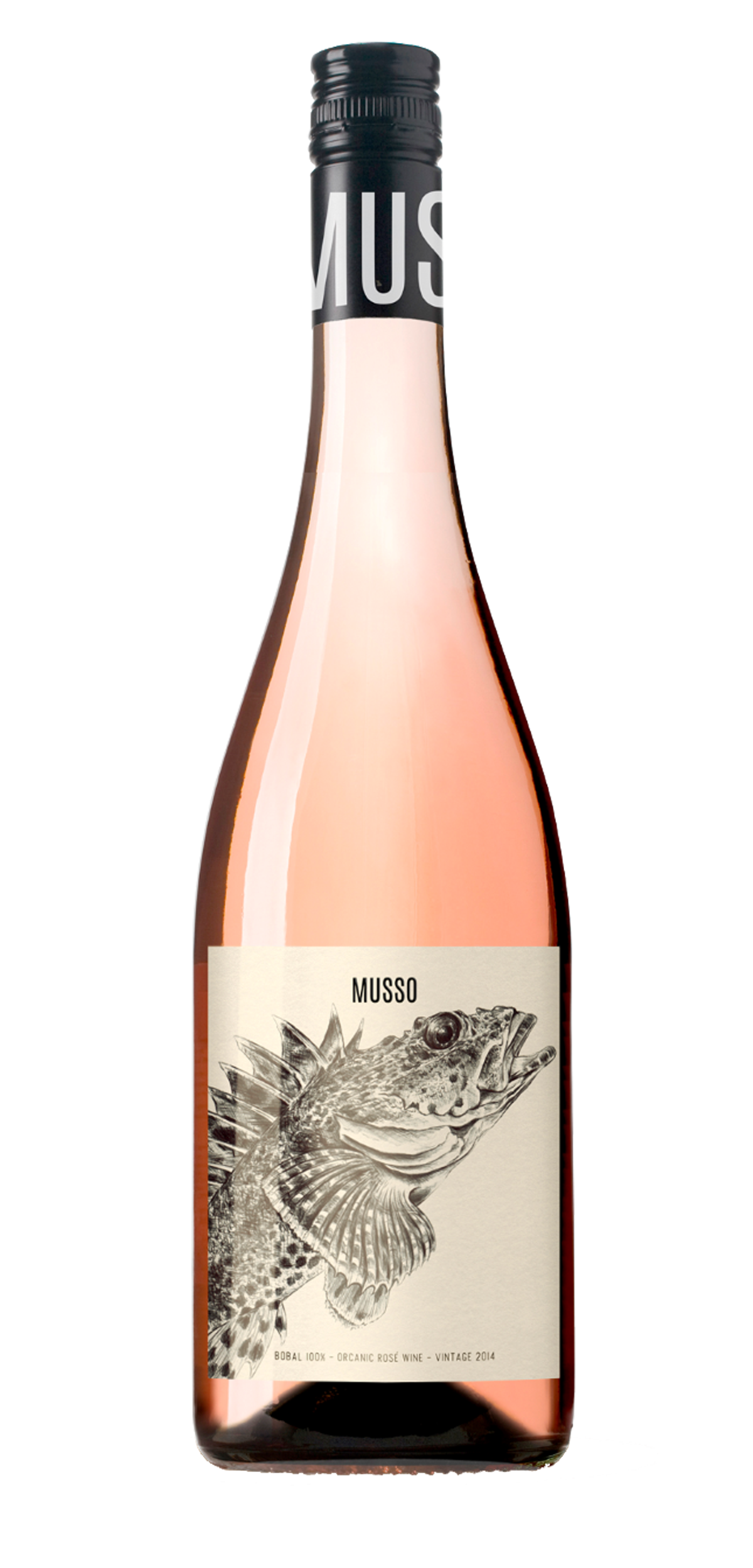 Musso bobal wine wonderful. Old bottle label png png free stock