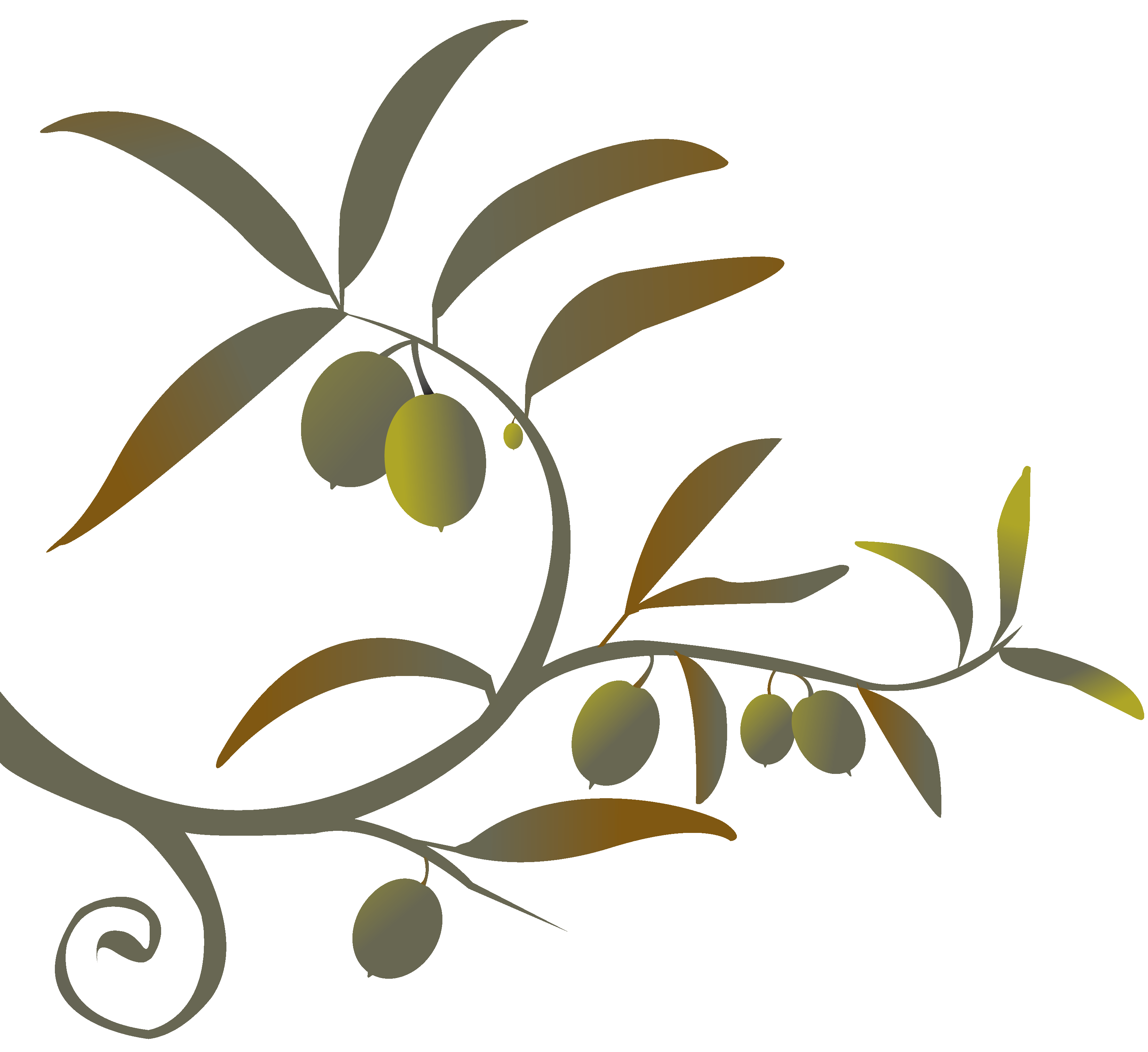 Olive branch png. Siren song of the