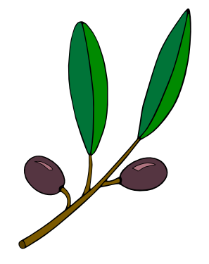 Olive clipart olive plant. Free branch clip art