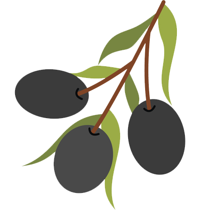 Olive clipart black plum. How is oil made