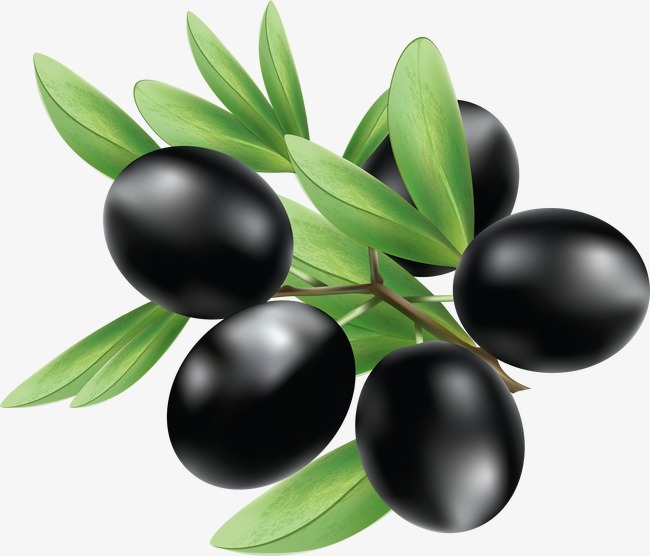 Olive clipart black plum. Simulation of olives food