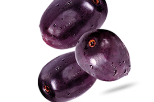 Olive clipart jamun fruit. Png image related wallpapers