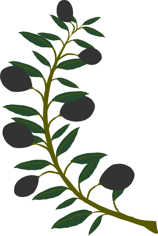 Free olive branch clipart