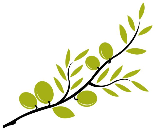 olive clipart olive branch