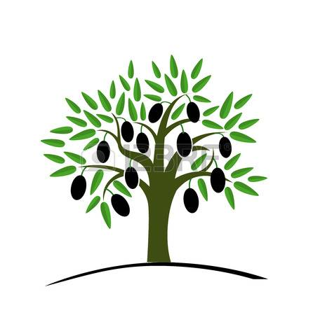 Olive clipart olive plant. Tree at getdrawings com