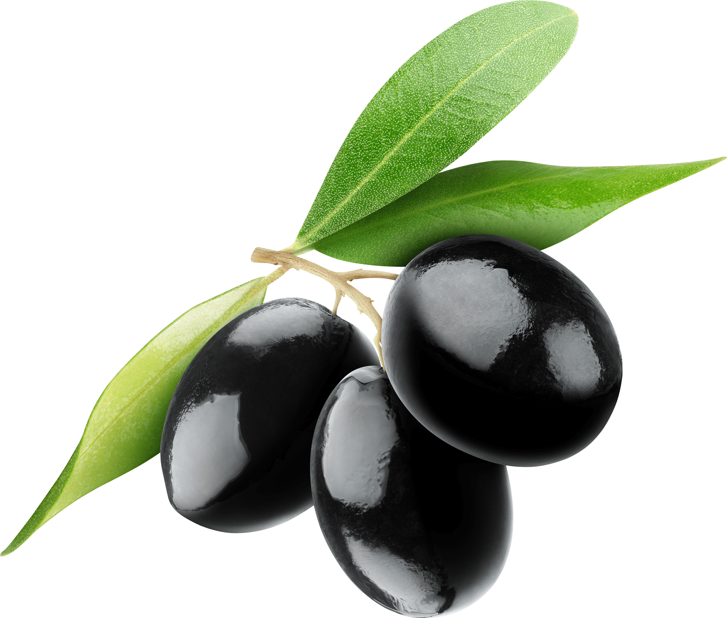 Olive clipart transparent. Black olives trio png