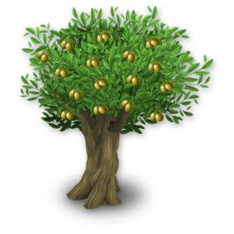 Olive tree png images