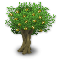 Olive tree png. Hay day wiki strategy