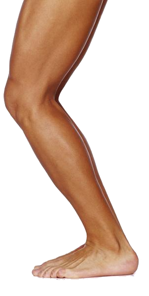 One leg png. Legz clipart transparent pencil