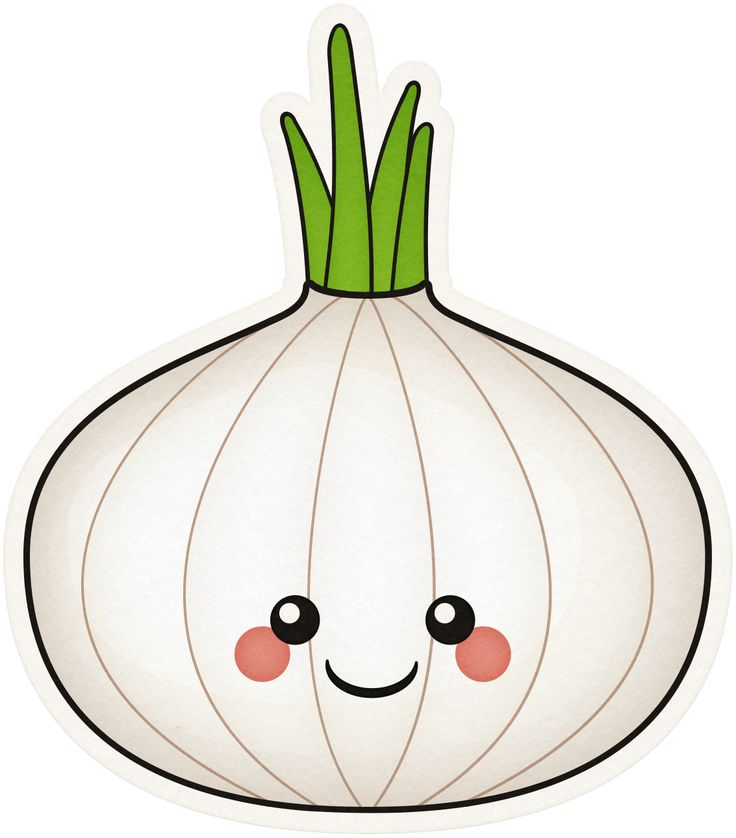 Onion clipart. At getdrawings com free