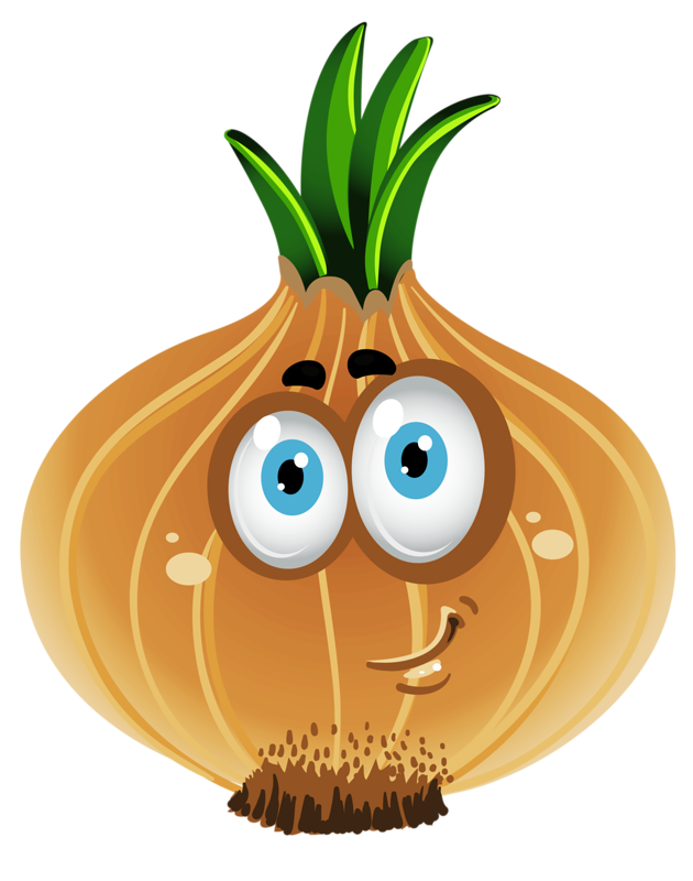 Fruits and veggies png. Image result for onion