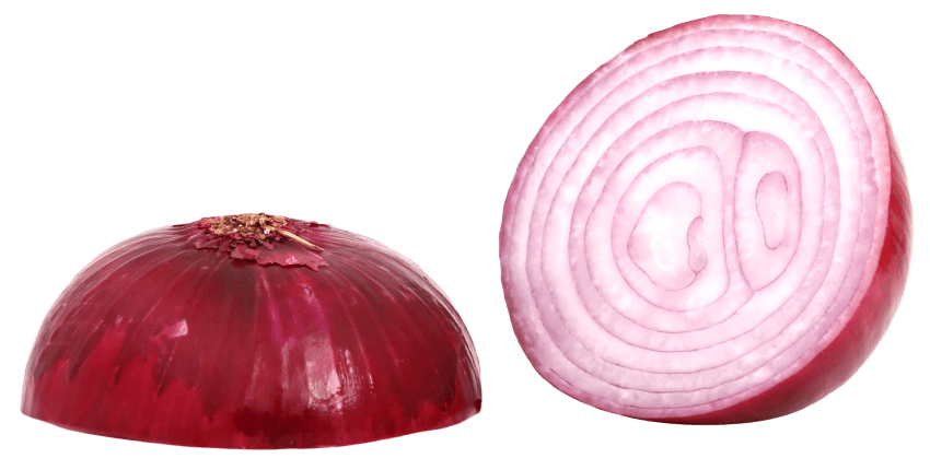 Onion clipart sliced onion. Red png free images