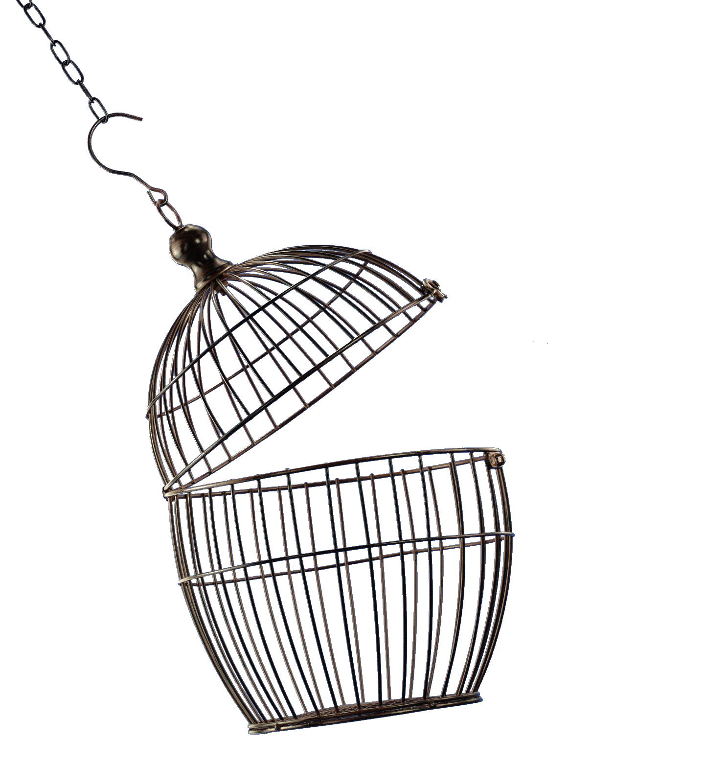 Open cage png. Bird image purepng free