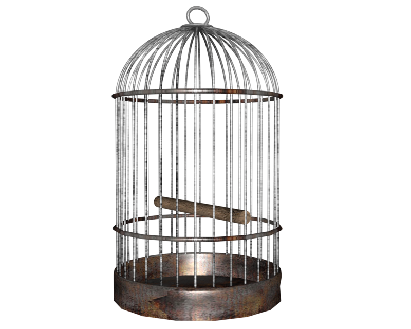 Open cage png. Bird