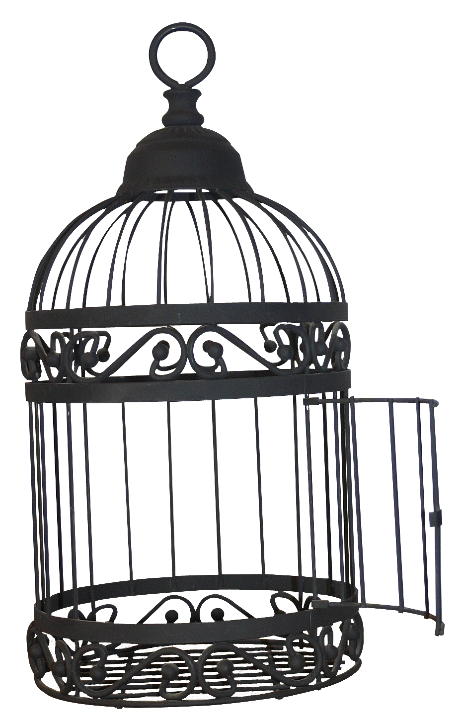 Open cage png. Birdcage domestic canary the