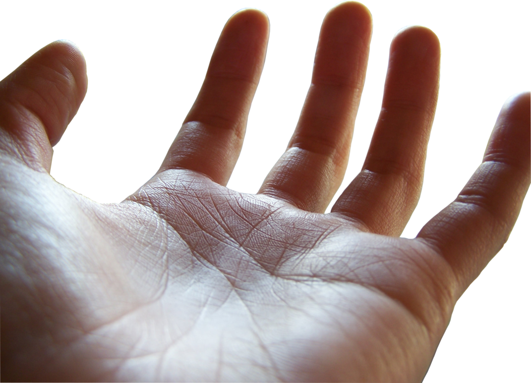 Open palm png. Female hand by megakorean