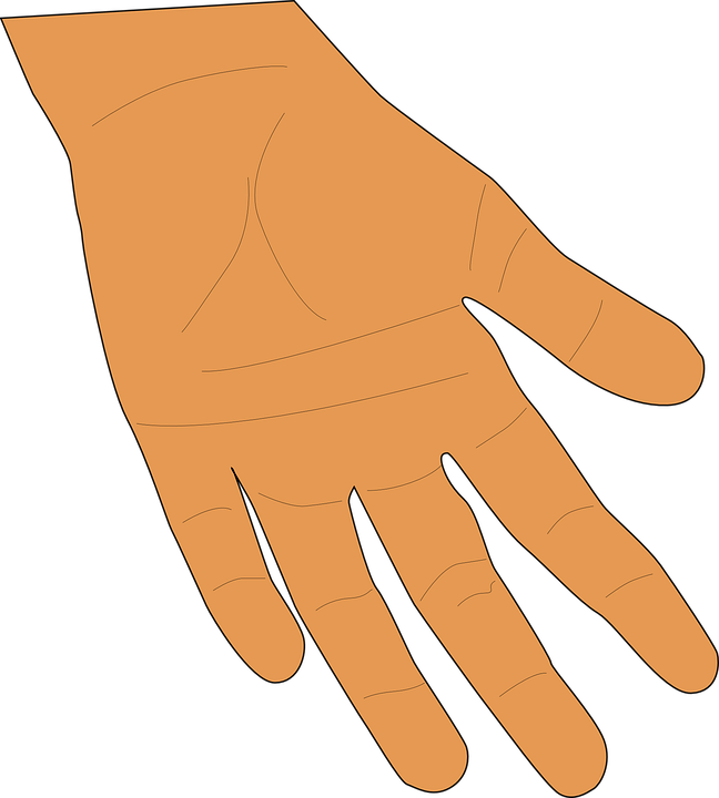 Open palm png. Giving hands transparent images