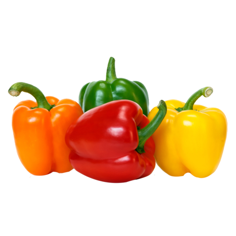 operation feed bell pepper png