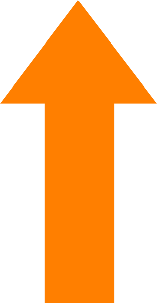 transparent h orange