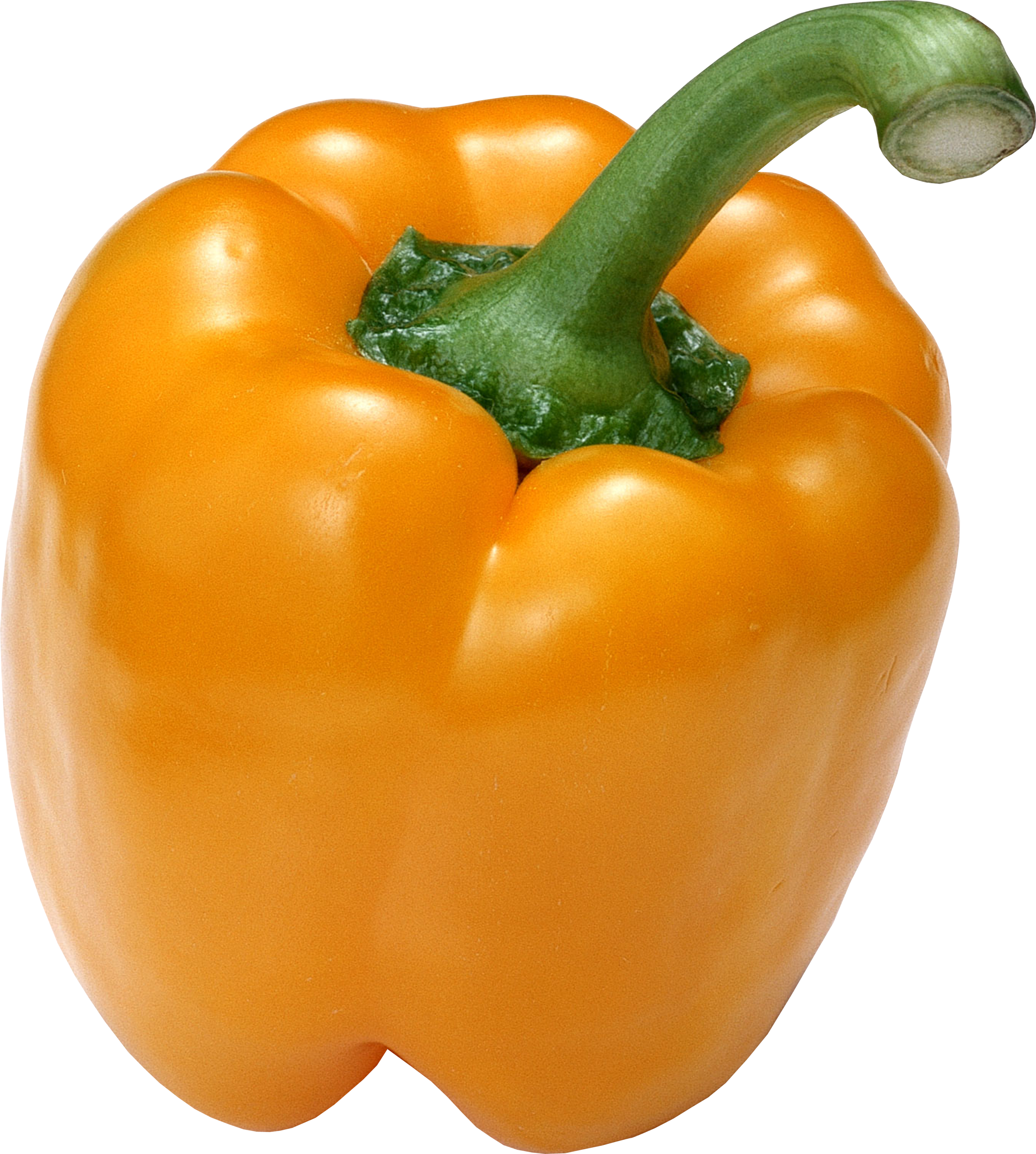 Orange bell pepper drawing png. Yellow one isolated stock