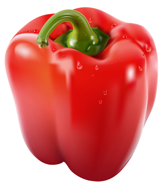 Orange bell pepper drawing png. Transparent red clipart picture