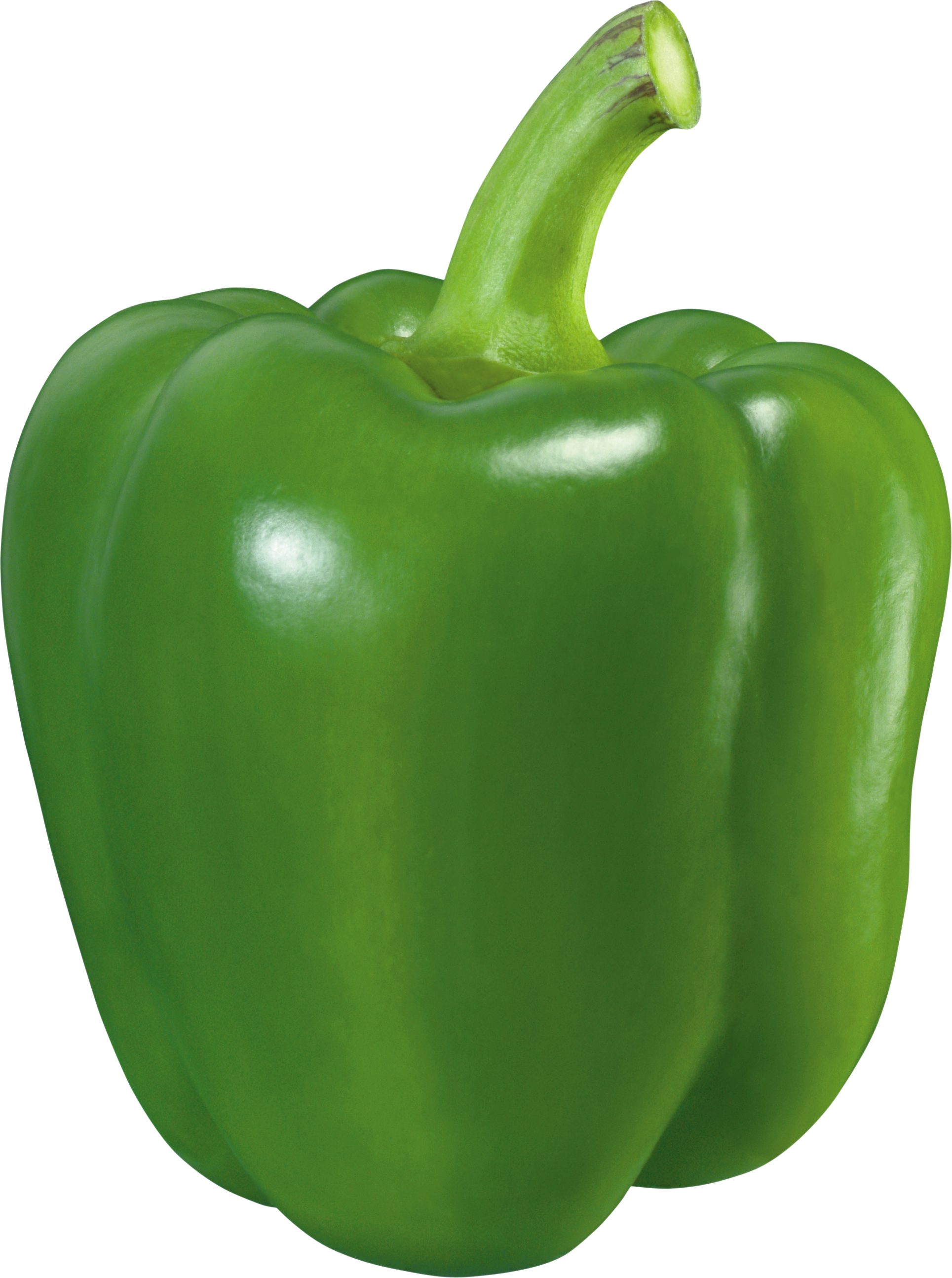 Orange bell pepper drawing png. Green five isolated stock