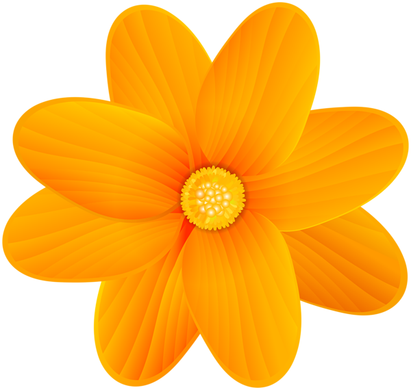 Orange flower png. Clip art image gallery